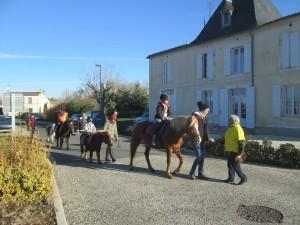 Les poneys des écuries GP