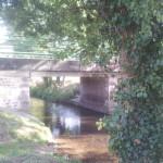 le pont arbre