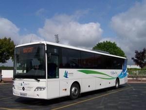 mouettes bus (Copier)