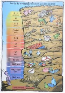 duree-biodegradabilite-dechets-en-mer-550