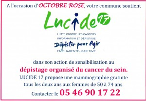 lucide 17 octobre rose