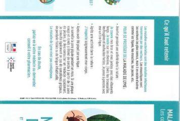 maladie-de-Lyme-recto-page-001 (Copier)