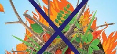 Interdiction du brûlage des déchets verts par les particuliers