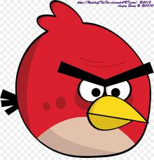 oiseau colère