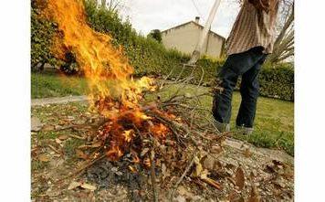 incineration-des-vegetaux (Copier)
