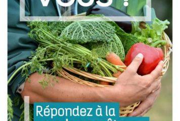 CDC Canton de Gémozac-pat (Copier) (Copier)