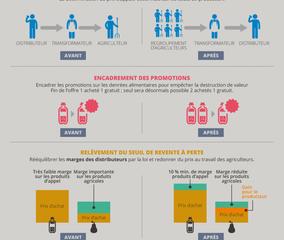 infographie_loi-egalim-768×1597 (Copier)